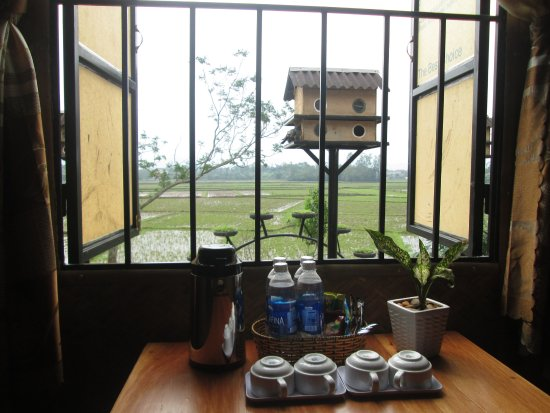 Happy Greenfield: Tea & coffee for free in room,