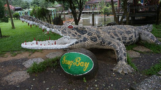 Yang Bay Eco Park: парк