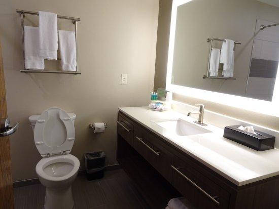 Holiday Inn Express & Suites Hot Springs: bathroom
