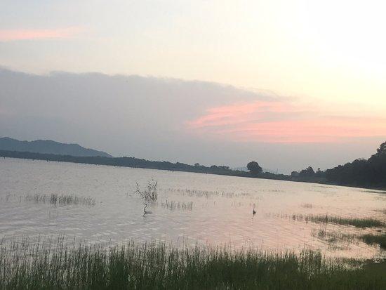 Amaya Lake: Kandalama Lake at the evening