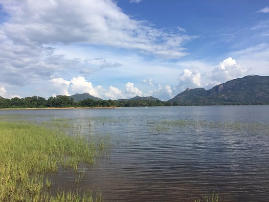 Amaya Lake: Sunny morning at lake