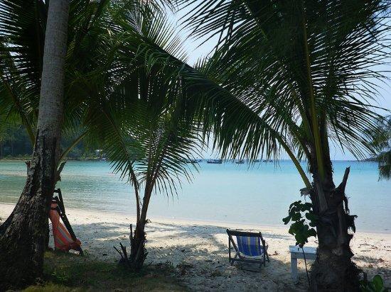 Siam Hut Koh Kood Resort: Тенёчек под пальмами.