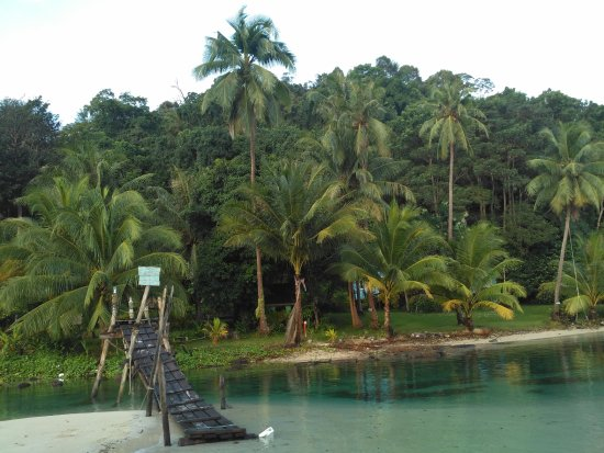 Siam Hut Koh Kood Resort: Пляж.