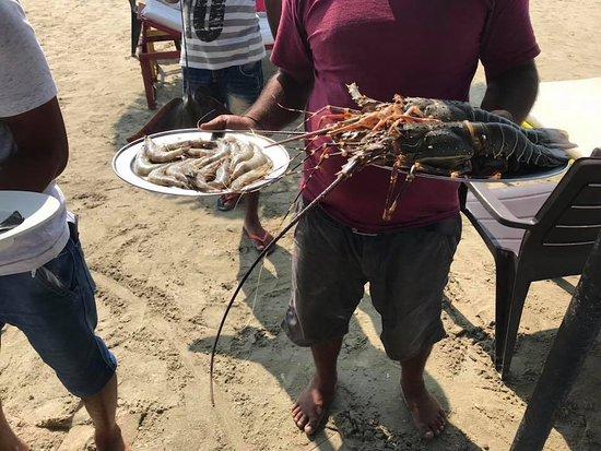 Mish Mar: Lobster & king prawns