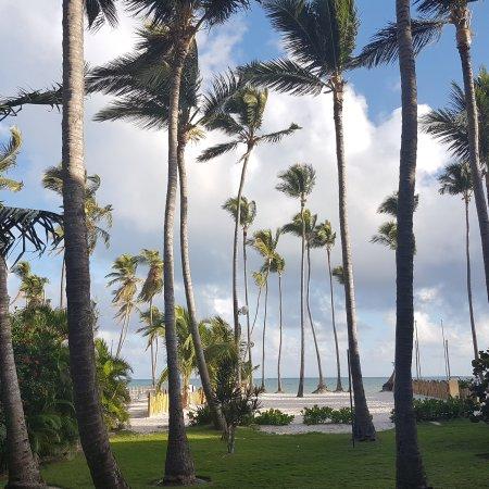 Dreams Palm Beach Punta Cana Bewertung