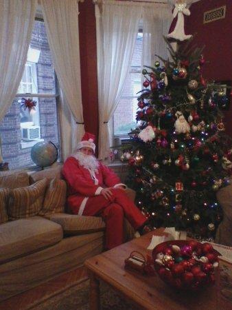 Adam's Inn: The Christmas tree.