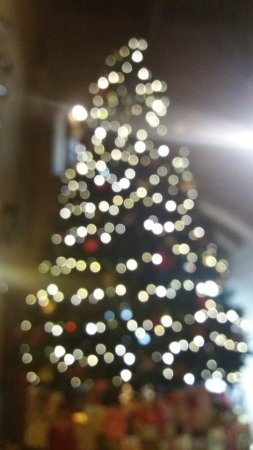 Warwick Castle: Christmas Tree