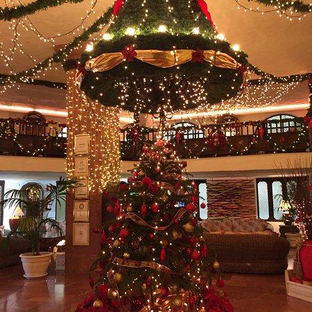Hotel Parque Tropical Photo