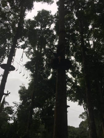 Bali Treetop Adventure Park Photo