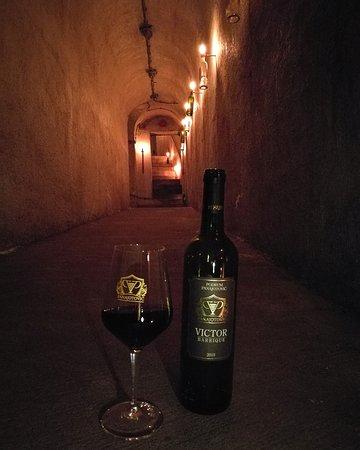 Podium Panajotovic: Wine tasting at Wine Cellar Panajotovic - Barrique wine
