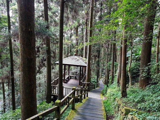 Fenrui Historic Trail Picture