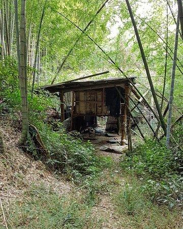 Fenrui Historic Trail