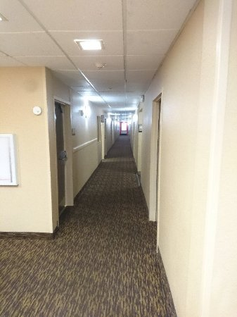Extended Stay America - Orlando - Convention Center - Sports Complex Image