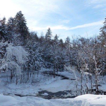 Arrowhead Provincial Park Photo