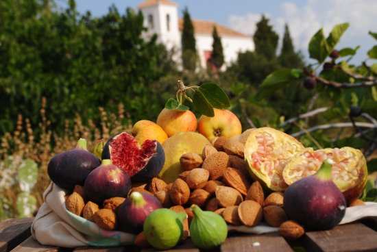 Mairena, Espanha: Autumn fruits to forage