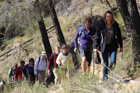 Mairena, Spain: Hiking