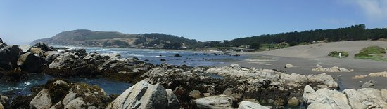 Matanzas, Chile: Panoramic view towards the hotel from the rocky point