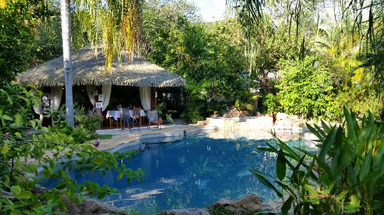 Villas Kalimba: 20171203_153433_large.jpg