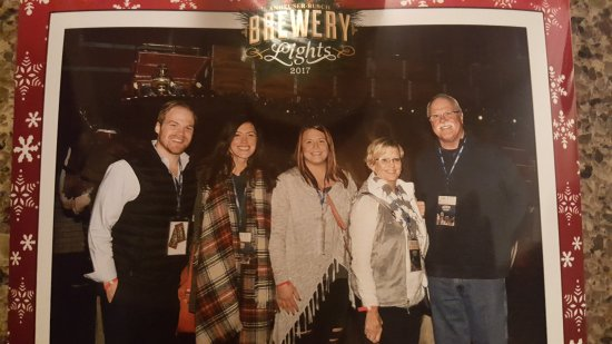 Budweiser Brewery Experience: Picture with the Clydesdales
