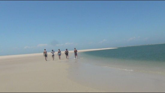 Crystal Coast Ecotours - Private Tours: Beautiful Beach at Cape Lookout