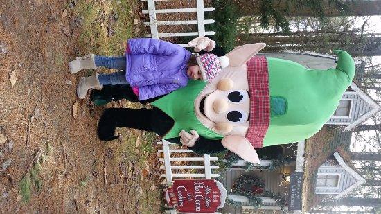 Charmingfare Farm: Elf