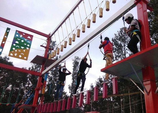 Poppy Hills: Basic Rope activities ( Power pole )