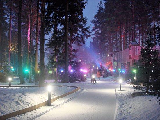 Okhta Park Ski Complex: каток