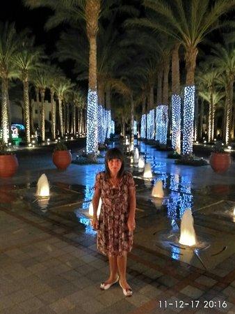 Grand Rotana Resort & Spa