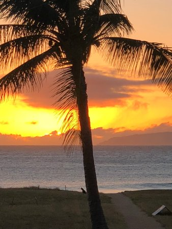 on filename bedroom cottages world beaches master in barking of beach best kauai sands picture the