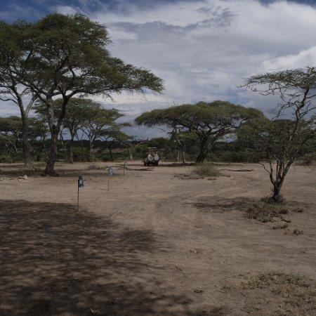 Ang'ata Migration Ndutu Camp: photo3.jpg