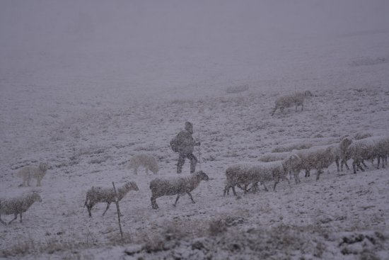 Piana di Castelluccio di Norcia : inverno