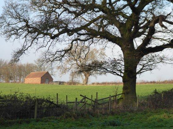 Calke Abbey: Calke Estate