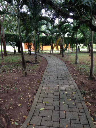 Hotel Villa De Ada: One of many paths on the property