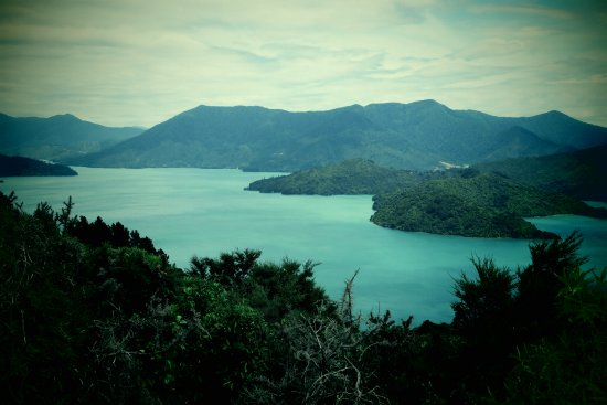 Marlborough Region, Nova Zelândia: Queen Charlotte Track looking down on Kenepuru Sound