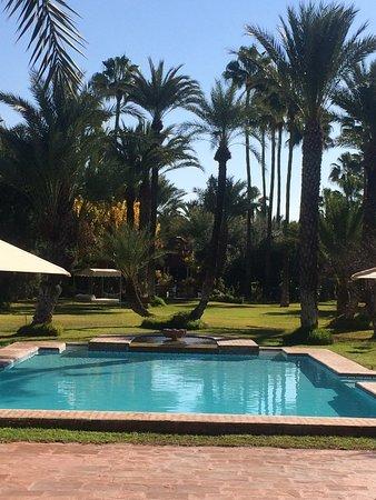 Dar Ayniwen Villa Hotel: Esta es la piscina y parte del jardín