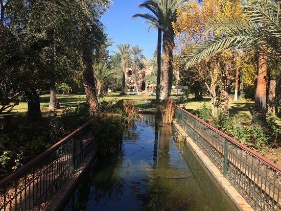 Dar Ayniwen Villa Hotel: Otra parte del jardín con un estanque