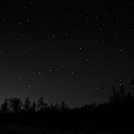 Elk Island National Park: photo1.jpg
