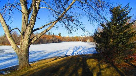 Wascana Centre Park-billede