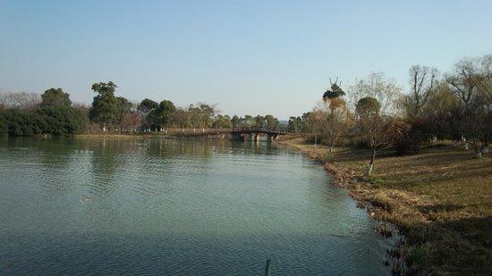 Suzhou Taihu Wetland Park: 園内は広大な感じです。