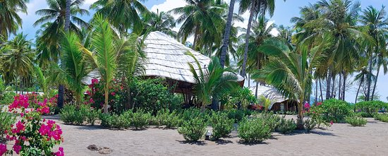 Coconut Garden Beach Resort: View