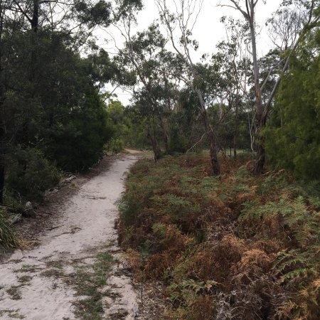 Beaumaris, Australia: Long Hollow Heathland