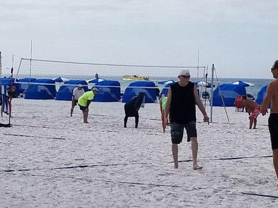 Beach Walk Photo