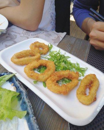 Neko Photo