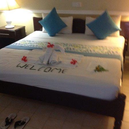 Hotel La Roussette : photo1.jpg
