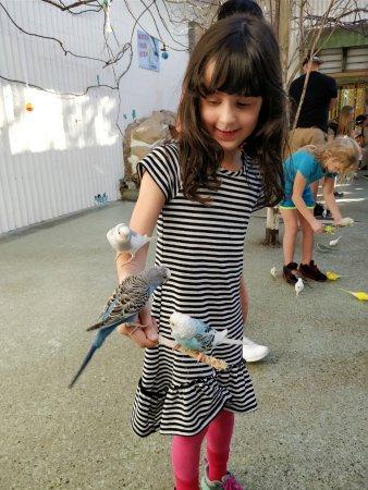 Gatorland General Admission Ticket: My daughter enjoying the aviary...