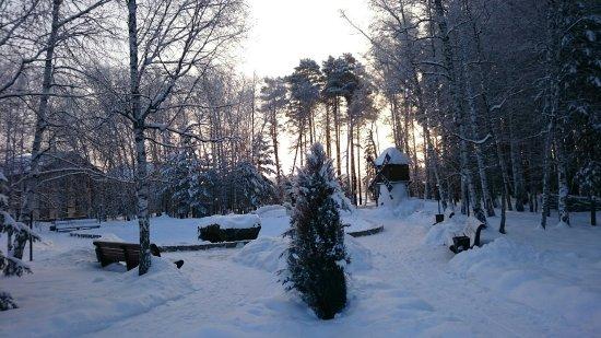 Serebryany Bor Picture