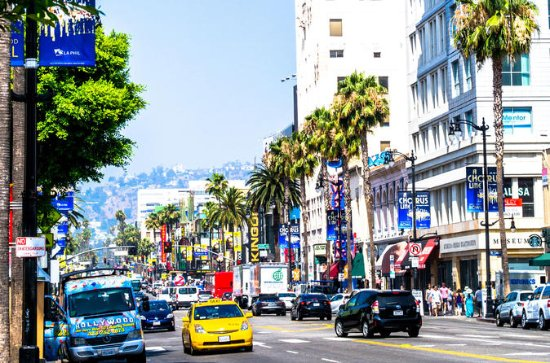 Private Hollywood Tour - Walk of Fame, Hollywood Theaters, Amoeba...