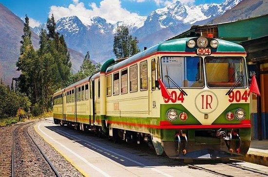 Machu Picchu en tren todo el día