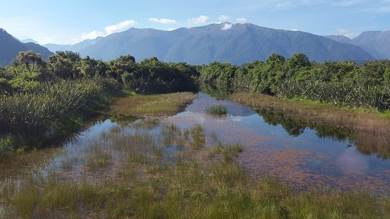 Haast Visitor Centre: Outside has been restored to its natural state