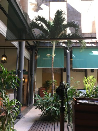 La Imprenta: Palm trees in the courtyard